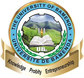partner Université de Bamenda